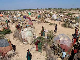 Campo de refugiados de Dadaab (Fuente: https://alexrayondotes.files.wordpress.com/2011/07/9d0d8-da.jpg)